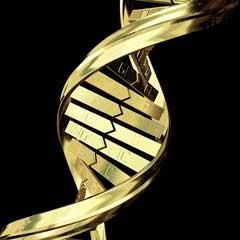 ciencia_adn_estructura